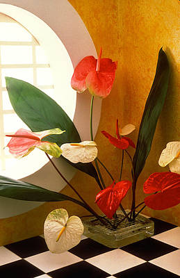 Anthurium Photograph - Anthuriums In Round Window by Garry Gay