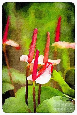 Photograph - Anthuriums by Rich Governali