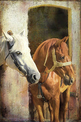 Animals Digital Art - Anticipation by Colleen Taylor