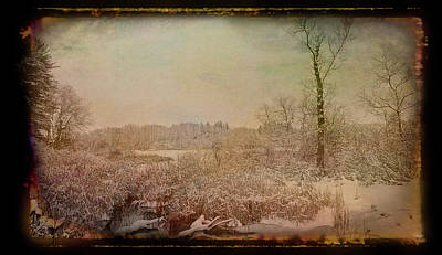 Photograph - Antique Amber Winters Glory by Aimee L Maher ALM GALLERY