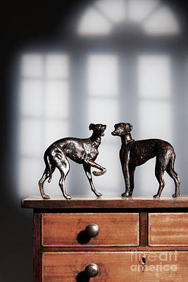 Greyhound Photograph - Antique Bronze Greyhound Dogs by Amanda Elwell