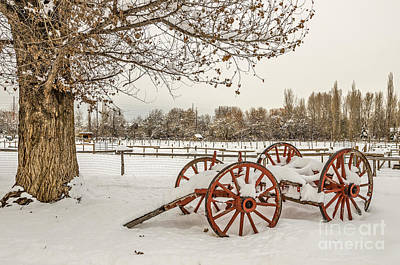 Photograph - Antique Cart With Snow by Sue Smith