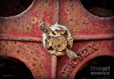 Cotter Photograph - Antique Cotter Pin by Korrine Holt