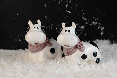 Photograph - Antique Cow Salt And Pepper Shakers In Snow by Betty Denise