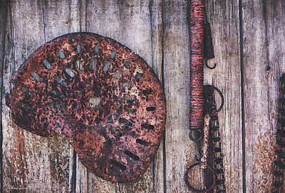 Photograph - Antique Farm Tools by Anna Louise