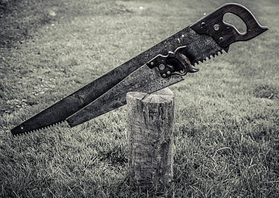 Handsaw Photograph - Antique Hand Saws In A Stump - Bw by Chris Bordeleau