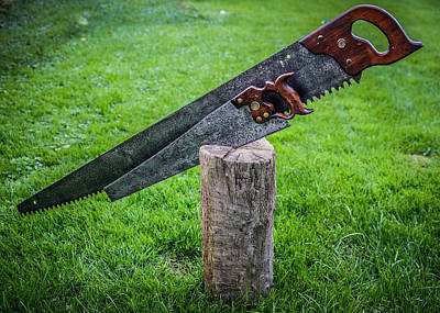 Handsaw Photograph - Antique Hand Saws In A Stump by Chris Bordeleau