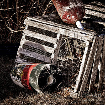 Harbor Dock Photograph - Antique Maine Lobster Trap  by Olivier Le Queinec