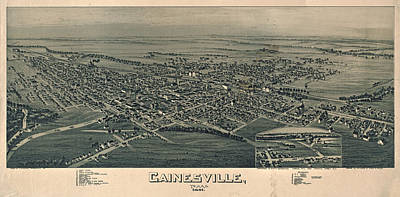 Drawing - Antique Maps - Old Cartographic Maps - Antique Birds Eye View Map Of Gainesville, Texas, 1891 by Studio Grafiikka