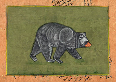 Antique Miniature Painting - Antique Miniature Painting Artwork Art Gallery Animal American Black Bear India by A K Mundra