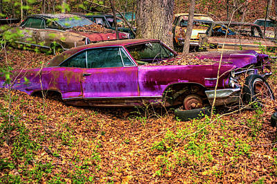Photograph - Antique Plum Automobile Decaying by Douglas Barnett