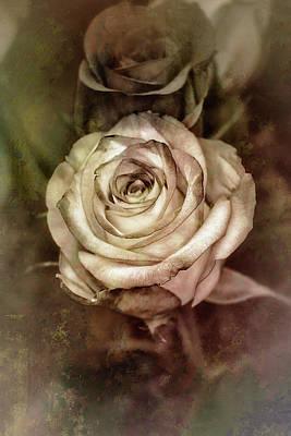 Photograph - Antique Rose by Elaine Malott