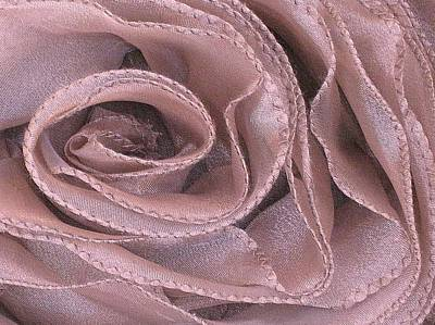 Photograph - Antique Rose In Pink by Carolyn Jacob