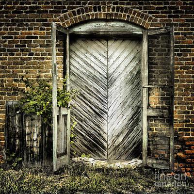 Screen Doors Photograph - Antique Store Door by Sari Sauls
