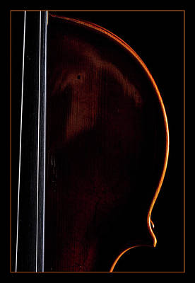 Photograph -  Antique Violin 1732.03 by M K  Miller