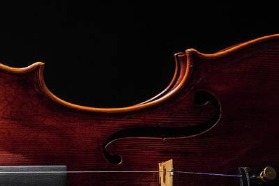 Photograph -  Antique Violin 1732.07 by M K Miller