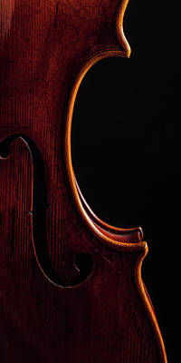 Photograph -  Antique Violin 1732.08 by M K  Miller