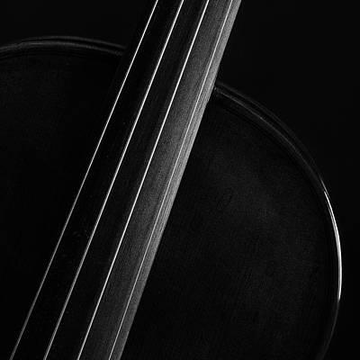 Photograph -  Antique Violin 1732.11 by M K Miller