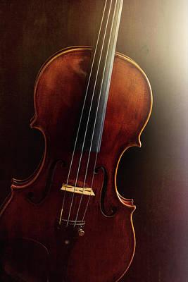 Photograph -  Antique Violin 1732.17 by M K Miller