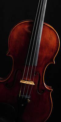 Photograph -  Antique Violin 1732.18 by M K Miller