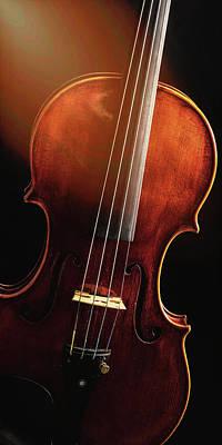 Photograph -  Antique Violin 1732.19 by M K Miller
