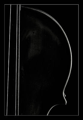 Photograph -  Antique Violin 1732.28 by M K  Miller