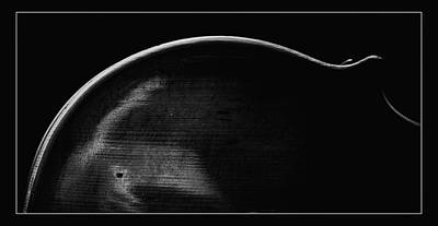 Photograph -  Antique Violin 1732.29 by M K Miller