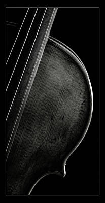 Photograph -  Antique Violin 1732.31 by M K  Miller