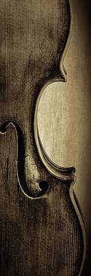 Photograph -  Antique Violin 1732.33 by M K  Miller
