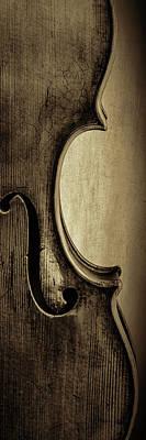 Photograph -  Antique Violin 1732.33 by M K Miller