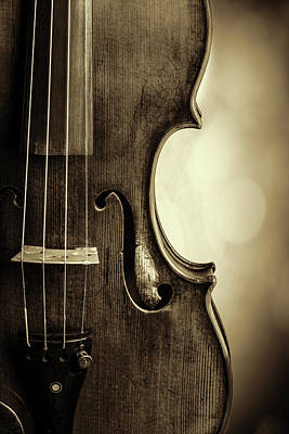 Photograph -  Antique Violin 1732.34 by M K  Miller