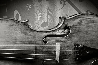 Photograph -  Antique Violin 1732.35 by M K  Miller