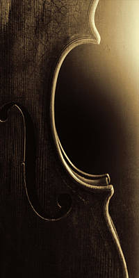 Photograph -  Antique Violin 1732.38 by M K  Miller