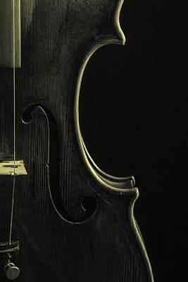 Photograph -  Antique Violin 1732.41 by M K Miller