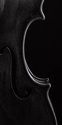 Photograph -  Antique Violin 1732.42 by M K  Miller