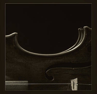 Photograph -  Antique Violin 1732.43 by M K Miller