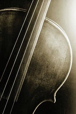 Photograph -  Antique Violin 1732.44 by M K  Miller