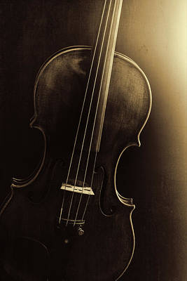 Photograph -  Antique Violin 1732.46 by M K Miller
