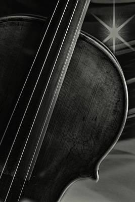Photograph -  Antique Violin 1732.52 by M K Miller