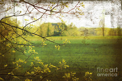 Tear Digital Art - Antiqued Grunge Landscape by Sandra Cunningham
