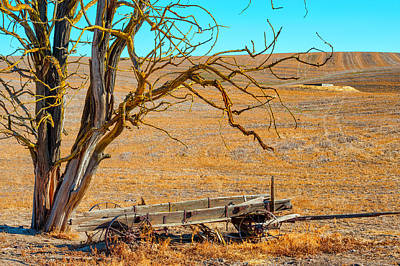 Photograph - Antiquity Of Past by Dee Browning