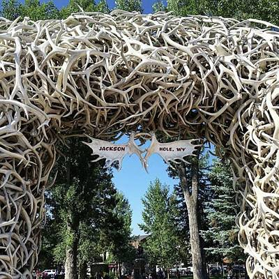 Photograph - #antlers #arch #jackson #wy #townsquare by Patricia And Craig