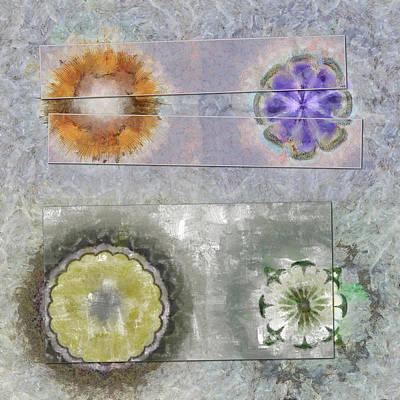 Fineness Painting - Antonymies Fineness Flower  Id 16165-071103-38151 by S Lurk