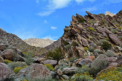 Photograph - Anza Borrego Desert Canyon by Kyle Hanson