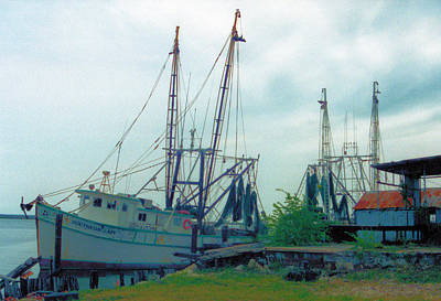 Photograph - Apalachicola Trawlers by Jan Amiss Photography