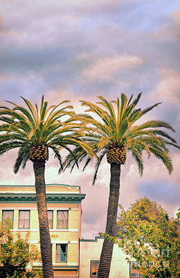 Photograph - Apartment Building With Palm Trees by Jill Battaglia