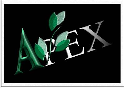 Digital Art - Apex Logo by Michael Hurwitz