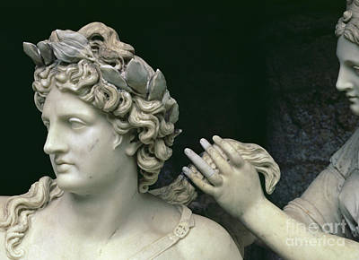 Sculpture - Apollo Tended By The Nymphs, Detail Showing The Head Of Apollo by Francois Girardon