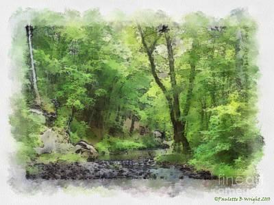 Photograph - Appalachian Creek by Paulette B Wright
