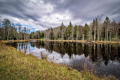 Photograph - Appalachian Mountain Pond by Andy Crawford